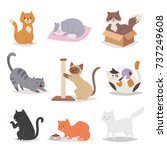 funny cartoon cats characters... | Shutterstock .eps vector #737249608