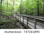 nature backgrounds | Shutterstock . vector #737261890