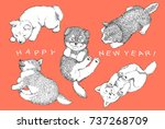 new years card   shibainu... | Shutterstock . vector #737268709