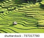 beautiful landscape in mu cang...   Shutterstock . vector #737317780