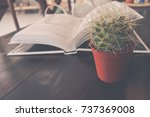 cactus  book and glasses.... | Shutterstock . vector #737369008