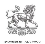 ink and pen drawing... | Shutterstock . vector #737379970