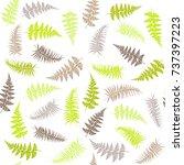fern frond herbs  tropical... | Shutterstock .eps vector #737397223