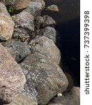 Small photo of large large granite stones lying on the shore of the lake with dark water. close-up photo
