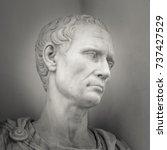 head and shoulders detail of... | Shutterstock . vector #737427529