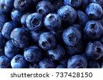 Blueberry Full Frame Background