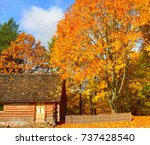multi colored autumn landscape... | Shutterstock . vector #737428540