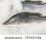 fresh sea bass on ice background | Shutterstock . vector #737437186
