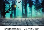 spooky halloween background...   Shutterstock . vector #737450404