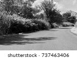 curved paved road in nature... | Shutterstock . vector #737463406
