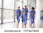 four healthcare workers in... | Shutterstock . vector #737467600
