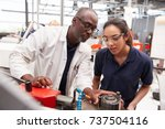 engineer showing equipment to a ... | Shutterstock . vector #737504116