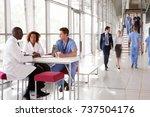 three healthcare workers... | Shutterstock . vector #737504176