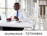 portrait of a businessman using ... | Shutterstock . vector #737544844