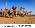 dubai  united arab emirates  ... | Shutterstock . vector #737550778
