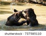 summer fight between the...   Shutterstock . vector #737585110