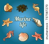 poster with set of marine life. ... | Shutterstock .eps vector #737587270