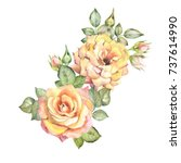 yellow roses.watercolor | Shutterstock . vector #737614990