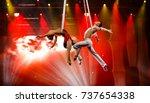 aerial fly | Shutterstock . vector #737654338