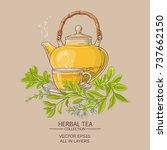 sage tea vector illustration on ...   Shutterstock .eps vector #737662150