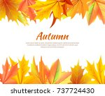 autumn background with leaves... | Shutterstock .eps vector #737724430