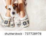 female and dog in slippers.... | Shutterstock . vector #737728978