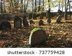old jewish cemetery | Shutterstock . vector #737759428