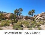 Desert Landscape Boulders And...