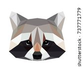 vector polygonal raccoon... | Shutterstock .eps vector #737771779