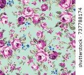 shabby chic or granny chic... | Shutterstock .eps vector #737788174