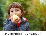 child kid eating apple fruit... | Shutterstock . vector #737820379