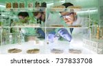 agricultural lab team of... | Shutterstock . vector #737833708
