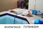 Swimming Pool Under Repair...