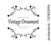 vector decorative frame.... | Shutterstock .eps vector #737853994