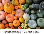 Colorful Varieties Of Pumpkins...