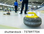 curling stone on a game sheet. | Shutterstock . vector #737897704