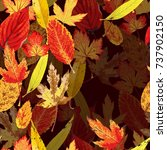autumn pattern with leaves   Shutterstock .eps vector #737902150