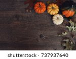 fall thanksgiving and halloween ... | Shutterstock . vector #737937640