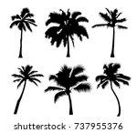 set tropical palm trees  black... | Shutterstock . vector #737955376