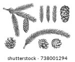 set of different cones and... | Shutterstock .eps vector #738001294