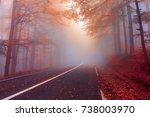 autumn day in the foggy forest... | Shutterstock . vector #738003970