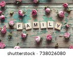 word family and small pink... | Shutterstock . vector #738026080