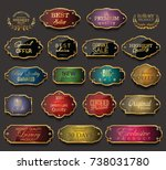 retro vintage golden badges... | Shutterstock .eps vector #738031780