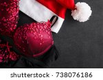 red hat and bra. search and... | Shutterstock . vector #738076186
