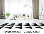 Black And White Carpet In...