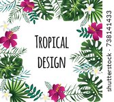 square tropical frame  template ... | Shutterstock .eps vector #738141433