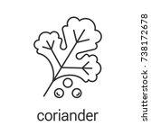 coriander linear icon. thin...   Shutterstock . vector #738172678