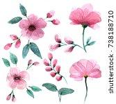 delicate pink flowers in the...   Shutterstock . vector #738188710