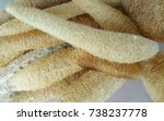loofah use for body scrub | Shutterstock . vector #738237778