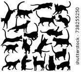 big set of vector silhouettes... | Shutterstock .eps vector #738255250